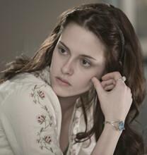 Twilight – Bis(s) zum Morgengrauen – Bella Swan – Bella Swan – Bluse
