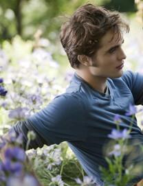 Eclipse – Bis(s) zum Abendrot – Blumenmeer – Edward Cullen – T-Shirt